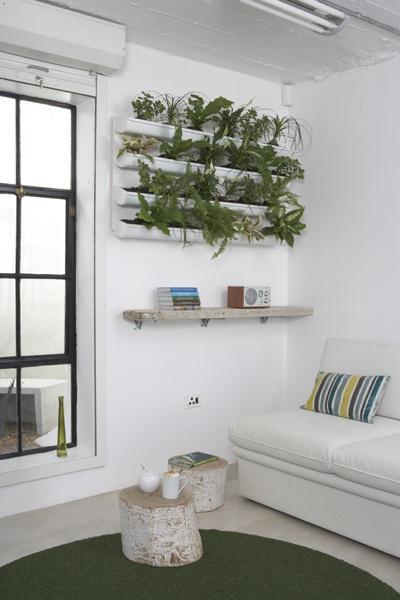 Focus comment d corer avec des plantes d int rieur - Decorer terras avec plantes ...