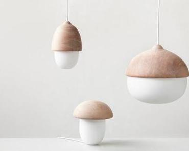 Du design, du bois, de la lumière...