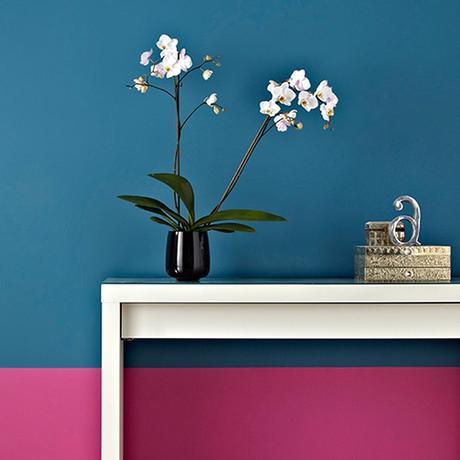 Mur de couleur flashy bleu et rose peinture.