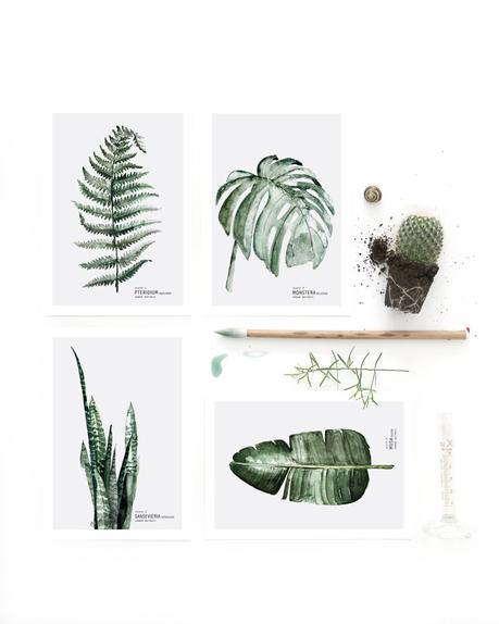 Focus sur la d coration murale d inspiration v g tale for Decoration murale vegetale