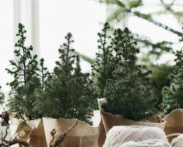Un Noël nature dans une maison norvégienne