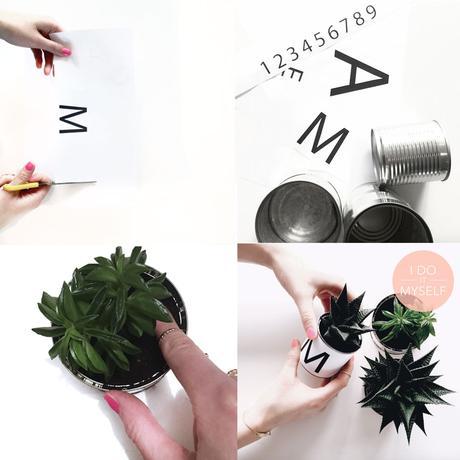 DIY Boite conserve