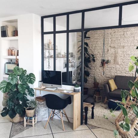 zoom sur les plantes d int rieur faciles d entretien et tr s d co. Black Bedroom Furniture Sets. Home Design Ideas