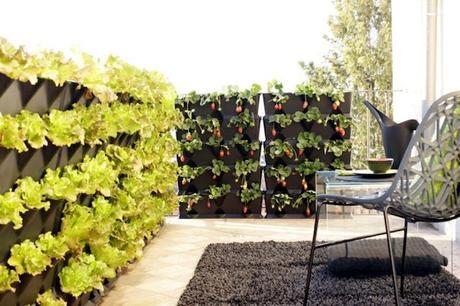 jardiner en appartement potager int rieur et l gumes de balcon. Black Bedroom Furniture Sets. Home Design Ideas