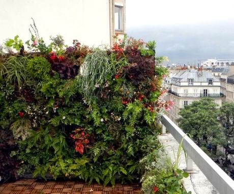 Pr Parons L T Un Balcon Une Idee Jardiniere
