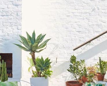 Cape Town / Roof Garden, imprimés d'inspirations tropicales pour Skinny laMinx  /