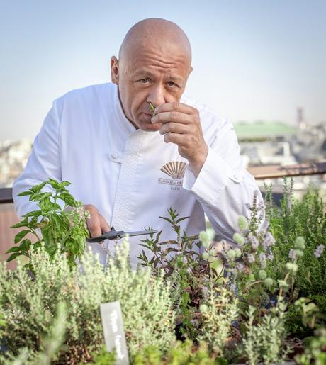 thierry marx christophe gautrand comptoir a epice rooftop