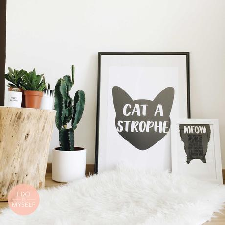 Affiche chat