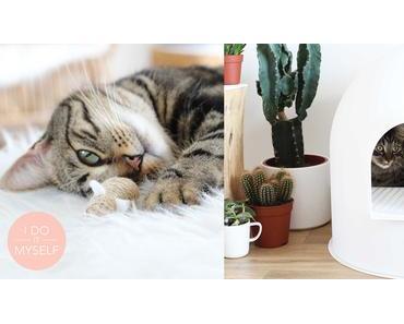 DIY 63 – Jeux pour chat en corde et Igloo