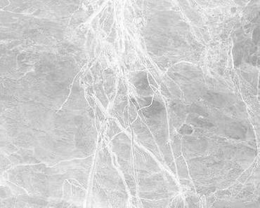 Tendance marbre : la maison total look