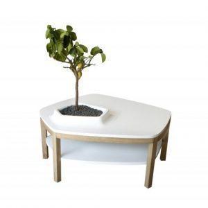 Meuble végétal quand mobilier plantes fusionnent…
