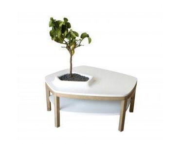 Meuble végétal : quand mobilier et plantes fusionnent…