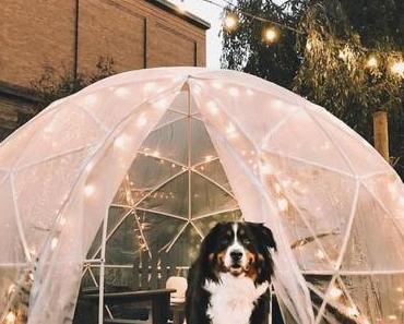 Une bulle de jardin pour profiter de son extérieur