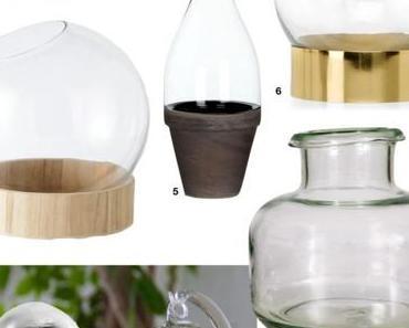 DIY Terrarium : un joli petit jardin en pot en seulement quelques minutes